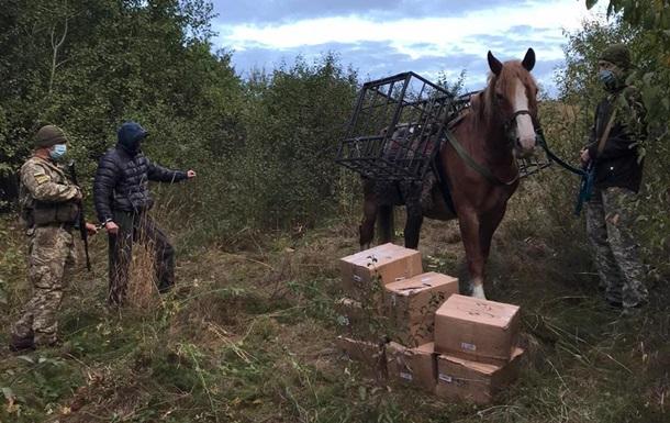 Контрабандист пытался на лошади переправить табак из России в Украину